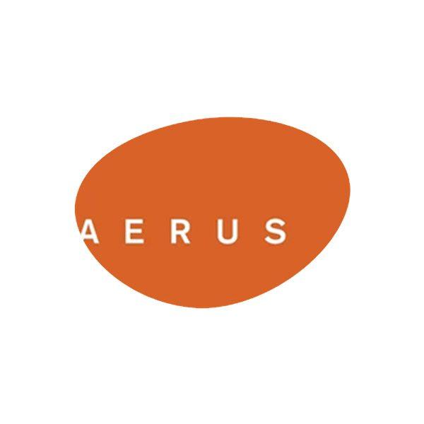 Aerus-1.jpg