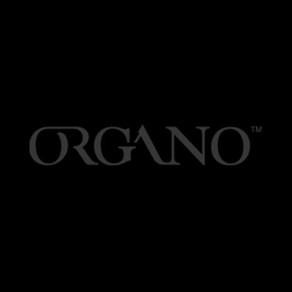 Organo-1.jpg